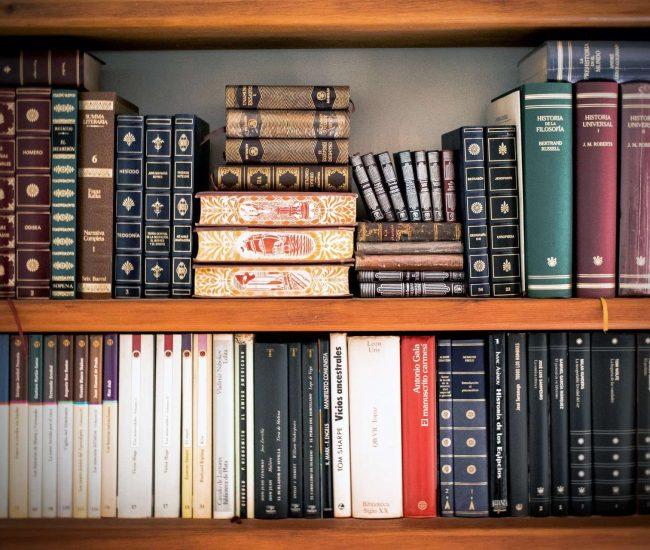 book-shelves-book-stack-bookcase-207662